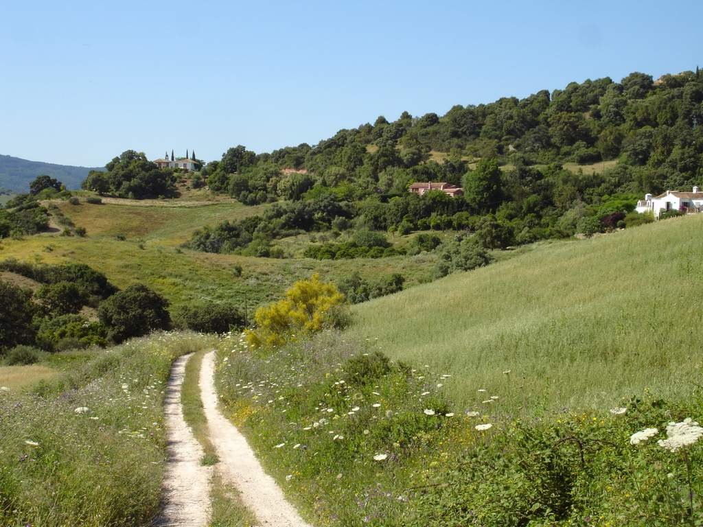 Decree 20/2002: Andalusia's Holiday Rural Rental Decree