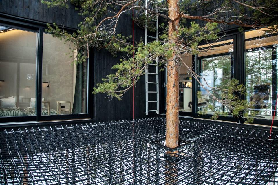 treehotel-7th-room-9